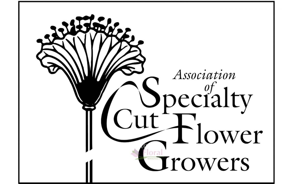 Potomac Floral Wholesale, Now a Member of the Association for Specialty Cut Flower Growers